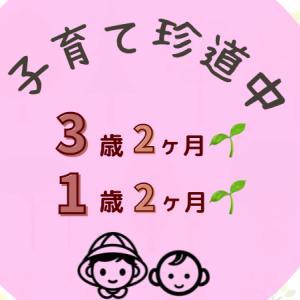 【子育て珍道中】3歳2ヶ月+1歳2ヶ月