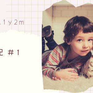 <育児日記#1> 3歳2ヶ月+1歳2ヶ月