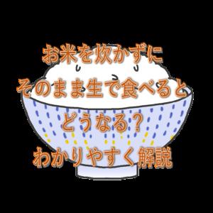 お米を炊かずにそのまま生で食べるとどうなる?わかりやすく解説