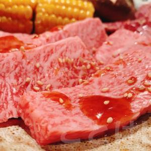 【大国町/焼肉】炭火焼肉 からから苑 元町店の店舗情報と実食レポ