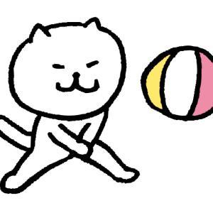 奈良【ビーチボール】ゆる~くたのしく