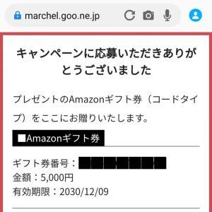 当選0018*Amazon ギフト券 5,000円