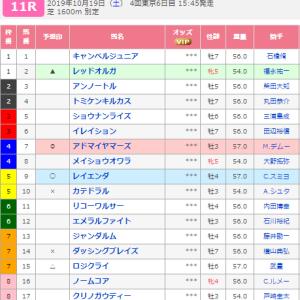 第22回富士ステークス~最終結論~