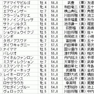 第68回日経新春杯の特別登録馬