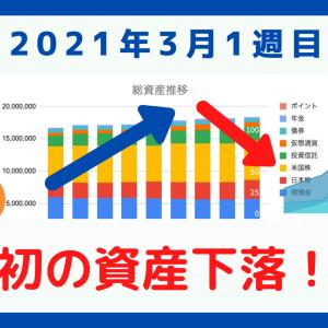 【資産公開】初めて資産が減少!連続最高資産更新記録は8週でストップ!【2021年3月1週目振り返り】