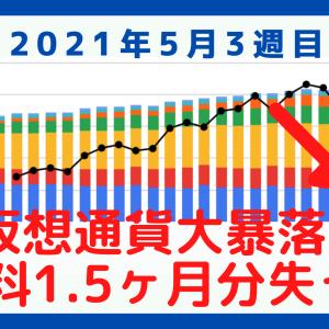 【資産公開】給料の1.5ヶ月分が溶ける!仮想通貨大暴落!【2021年5月3週目振り返り】