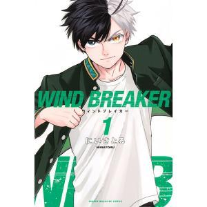 WIND BREAKER 1巻 あらすじとオススメしたい他作品