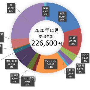 2020年11月家計簿