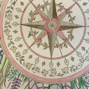 Enchanted Forest - Compass