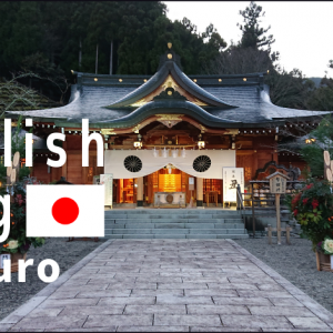 Hatsumode (初詣): the first time to visit a shrine in the new year