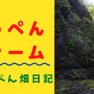 てっぺんファームの風景 大天井滝