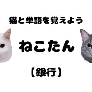ねこたん14【銀行】| 猫とタイ語単語を勉強しよう!
