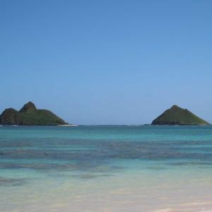 もし、無料で3回もハワイ旅行に行った事があるって言ったら✈️✈️嘘だと思いますよね‼️