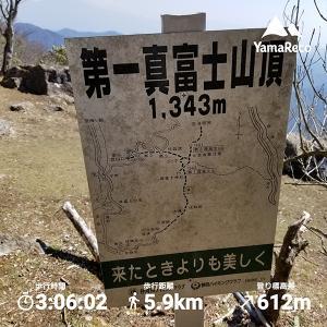 真冨士山(静岡県)トレイル