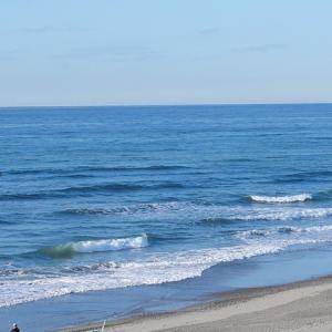 2020/11/24 浜岡方面 小波でまとまりなし