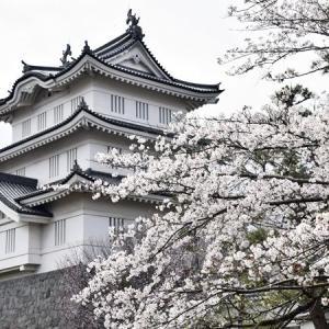 忍城址と水城公園の桜2020