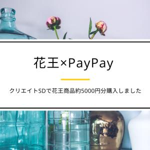 【PayPay花王キャンペーン】購入品の紹介 クリエイトSD