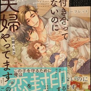 付き合ってないのに夫婦やってます。/山田パピコ