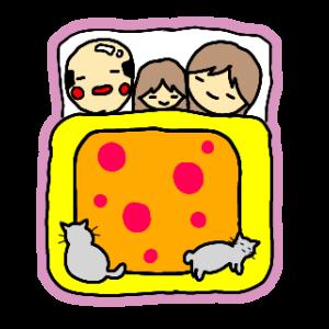 【トキソプラズマ症】9つの対策|猫と一緒に暮らそう