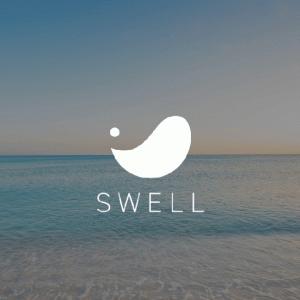 SWELL(スウェル)購入から導入・移行方法まで丁寧に解説【写真つき】