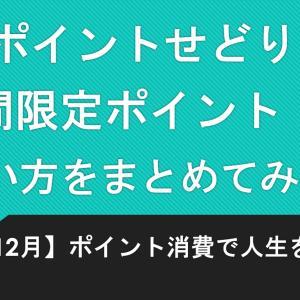 【楽天ポイントせどり】期間限定ポイントの使い方をまとめてみた!!