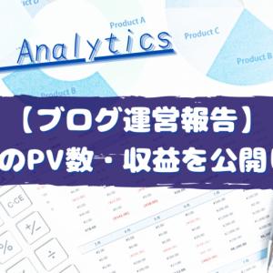 【ブログ運営報告】1カ月目のPV数・収益を公開します!