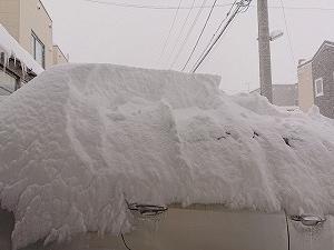 雪かき・人間性・あれこれ