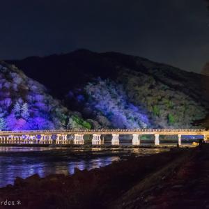 京都・嵐山花灯路 2020