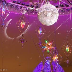 幻想的なクリスマスイルミネーションショー