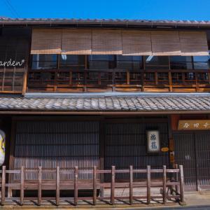 寺田屋の椿