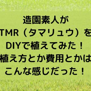 造園素人がTMR(タマリュウ)をDIYで植えてみた!植え方とか費用とかはこんな感じだった!