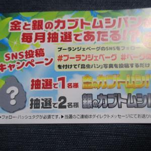 100種類100円パンのお店「ブーランジェベーグ」でキャンペーン実施中!(ブーランジェベーグ)
