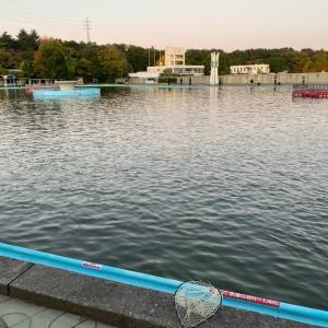 さいたま水上公園 2020/11/14  プールトラウト