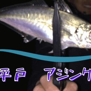 平戸釣り情報 アジング釣果記録[おすすめワームベスト5]