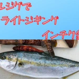 平戸ジギング・ジグで色んな釣りが可能!ライトジギングにインチク釣行【ゼロドラゴン:バルゴ】