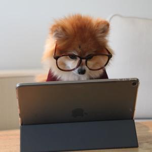 【体験記】いまの状態でパソコンを探すのは至難の業だ