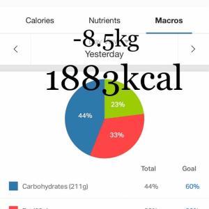 食べて痩せるを目指してる!-8.5kg達成【ダイエット日記】