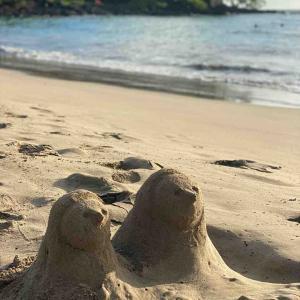 【マウウマエ ビーチ】砂サラサラのおすすめ穴場ビーチ【ハワイ島】