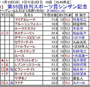 【競馬予想】第55回日刊スポーツ賞シンザン記念