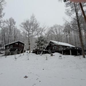 八ヶ岳『雪の10景 2020』— HPも初雪だ~!