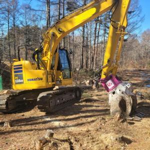 八ヶ岳ライフにおける「木との付き合い方」— 真冬の伐採作業2021 ②感動の伐採作業編