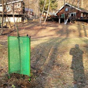よせばいいのに「極寒の中で庭仕事」— 生命の危険を感じた…