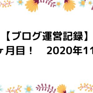 【ブログ運営記録】3ヶ月目! 2020年11月