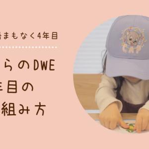 【2歳からのDWE】ディズニー英語システムを始めて1年目の進め方