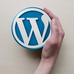 【WordPress】囲み枠を挿入後、エディタ画面で段落が表示されない問題の対処法