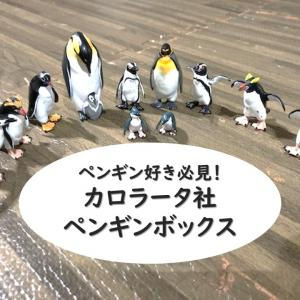 カロラータのペンギンフィギュアボックスに子供が夢中!知育にも◎