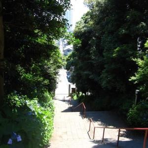 真間弘法寺に行ってきました