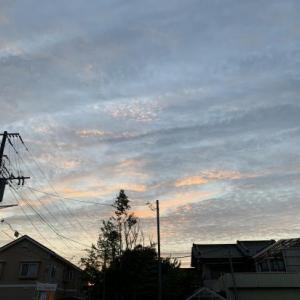 Evening sky 29