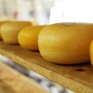 チーズ初心者にも優しいチーズ専門店「オーダーチーズ」は少量でも注文可能