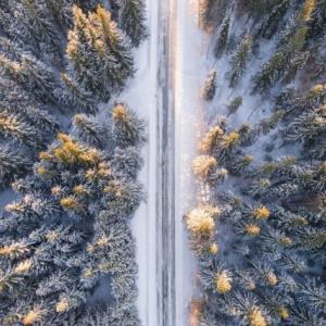 幻想的な世界を体験!雪の降る日は静かな5つの理由!